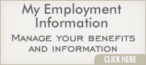My Employment Information
