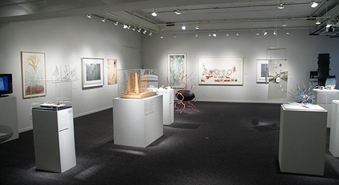 Installation view, A Resolution of the Arts and Sciences
