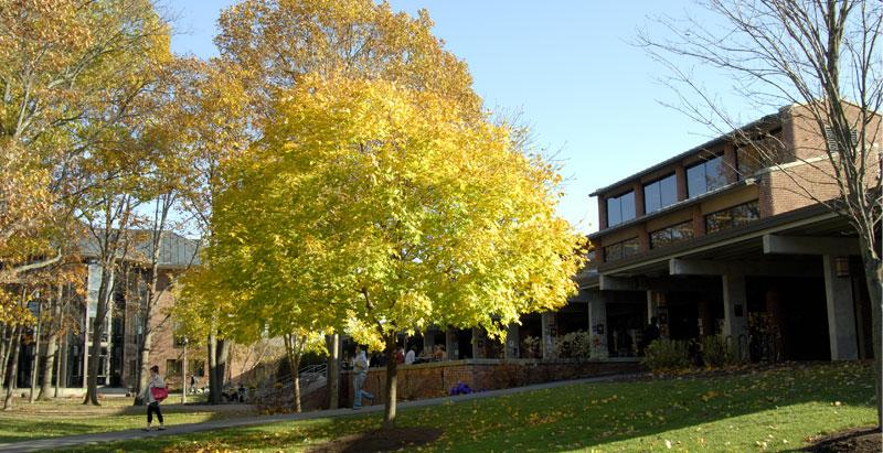 Skidmore College campus in the fall.