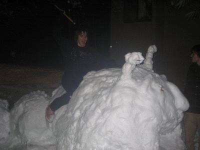 It snowing and the the power just went out. We could join the massive snowball fight happening on the green OR build a giant snow caterpillar outside our Ross A door. As you can see, we chose the latter. Winter 2008. Submitted by Jessica Reynolds '09.