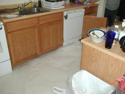 Dish soap is not a substitute for dishwasher detergent. Big mistake. Spruce A. Submitted by Craig Hyland '05.