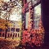 Autumn at Skidmore
