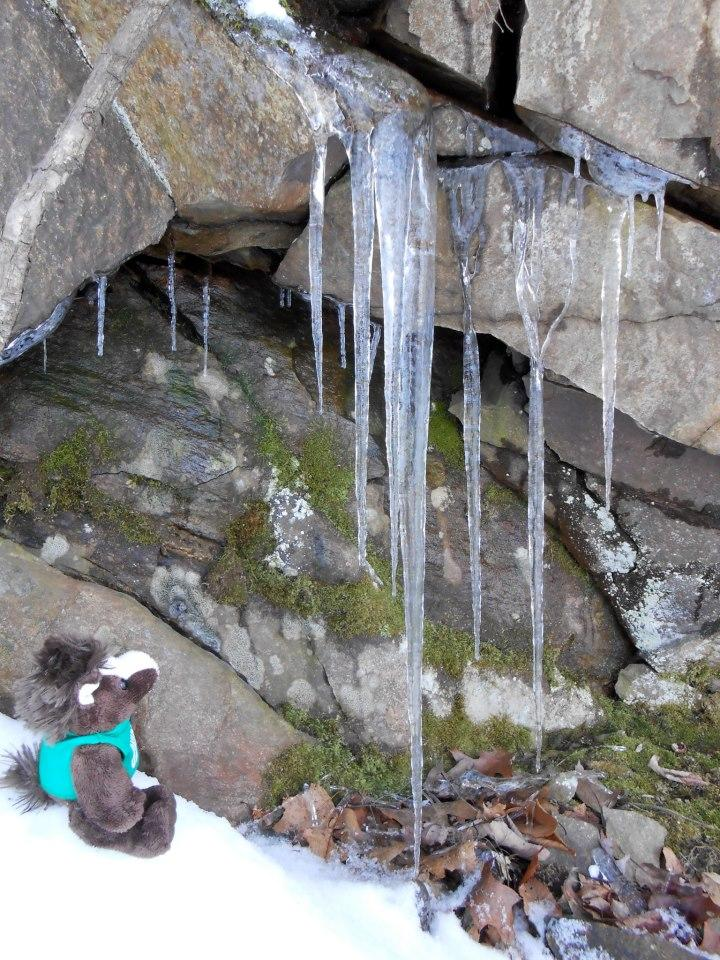Skids%20was%20fascinated%20with%20the%20icicles%20forming%20on%20some%20basalt.