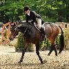 Samurai owned by Lee Kellogg Sadrian, ridden by Jennifer Bauersachs - Overall Third of the USHJA International Hunter Derby