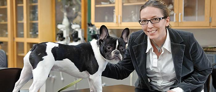 Teaching Professor Abby Drake does research on the evolution of dogs.