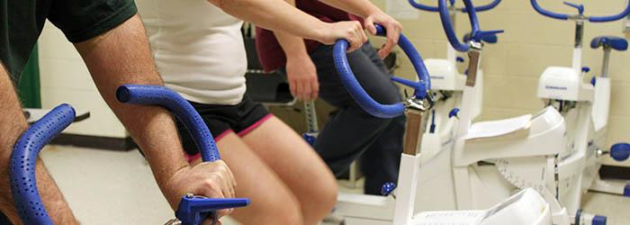 Exercise bicycles used in the Health and Exercise Sciences lab