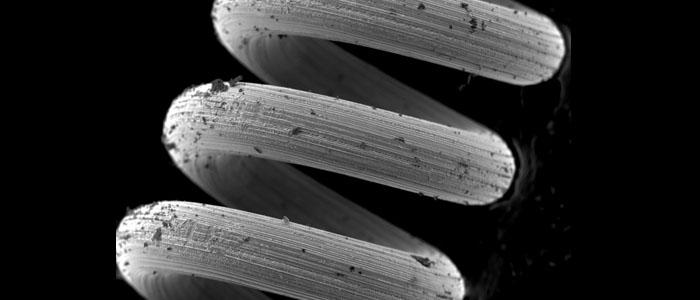 SEM micrograph