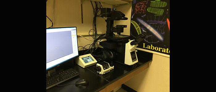 Olympus IX83 inverted light microscope with time laps function
