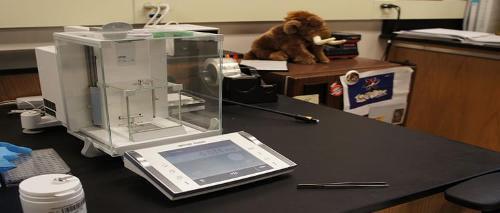 A very sensitive balance to measure the SPA Lab microgram samples