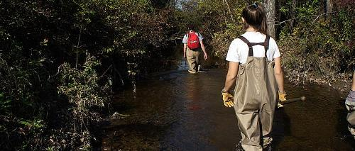 Wading through a creek to collect samples
