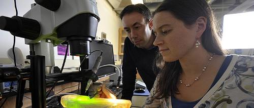 Brian and Amy Frappier use the microscope to analyze stalagmites