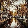 Golden Canal - Manuela tauscher - Amsterdam, The Netherlands