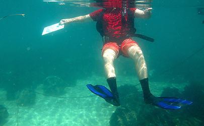 Chris Malvicini '17: Marine Science Institute in Bolinao,Pangasinan, Philippines