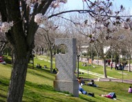 UAM campus in Spring