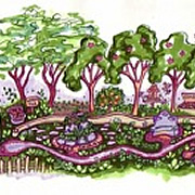 Bringing the Forest into the City: Creating a Community Food Forest for Saratoga Springs