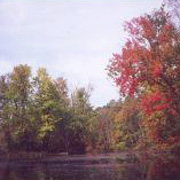 Kayaderosseras Creek in the fall