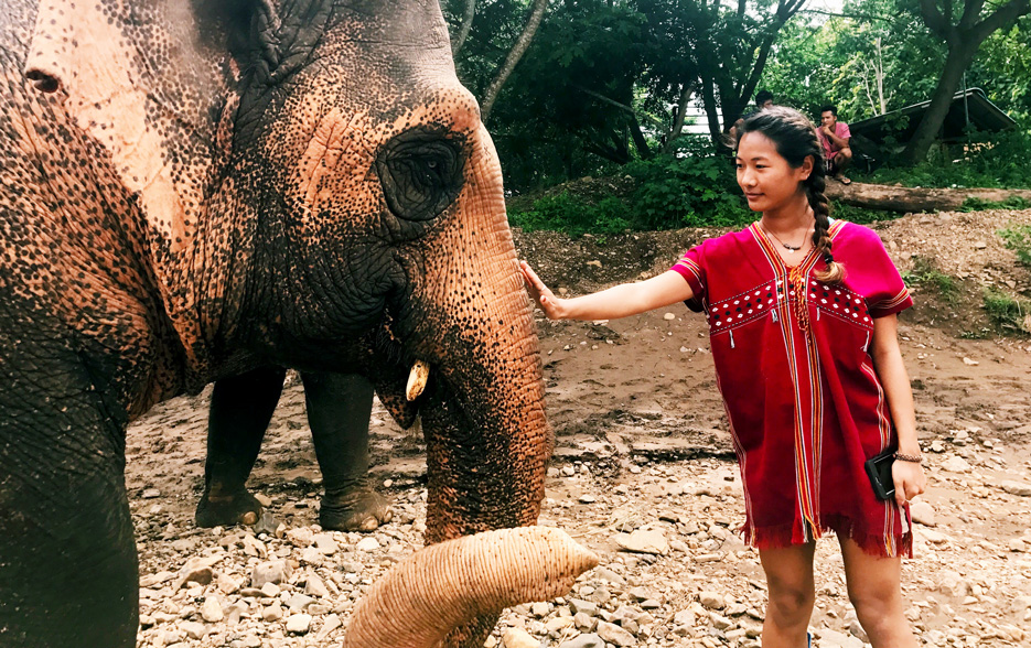 Woeser Dolma '18 visits an elephant sanctuary while studying abroad in Thailand