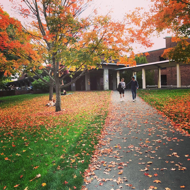 Skidmore campus in the fall