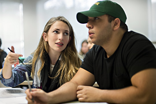 Your major decision
