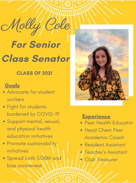 Molly%20Cole%20for%20Senior%20Senator