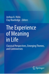 The Experience of Meaning in Life image
