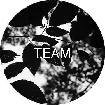 Storytellers' Team