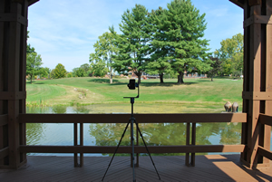 Skidmore College Pond in July