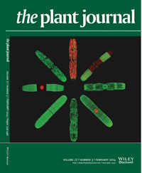 Plant Journal Feb 2014 cover