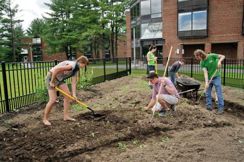 Community+Garden+workers