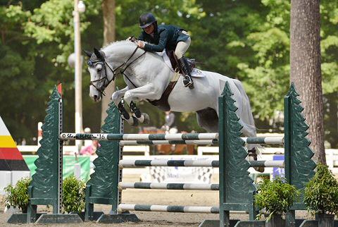 Horse+show