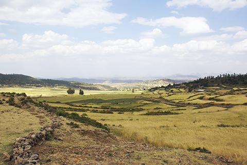 ethiopia+scene