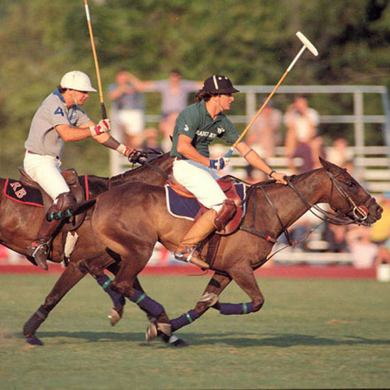 Polo+By+Twilight+