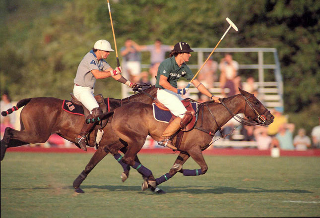 Polo by Twilight