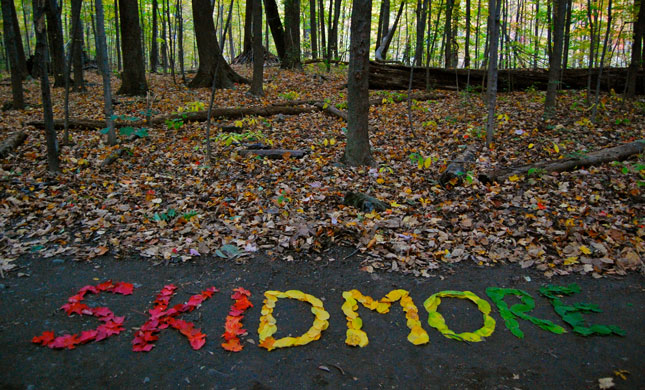 "Fall leaves arranged to spell ""Skidmore"""