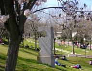 UAM campus in Spring