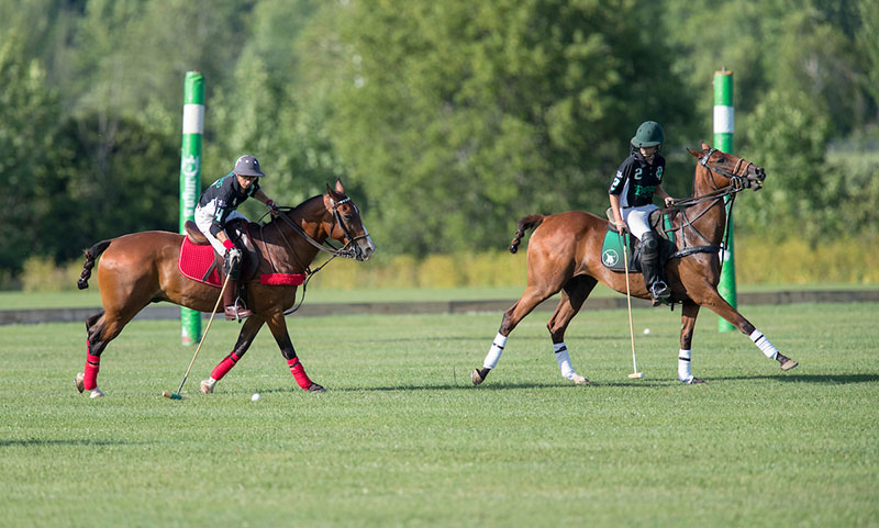 Polo Player Hitting Ball with another directly in front