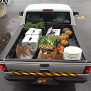 Feeding Mouths, Not Landfills: An Analysis of Food Recovery Efforts in Saratoga Springs