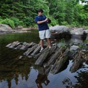 Logging, dams, and jams